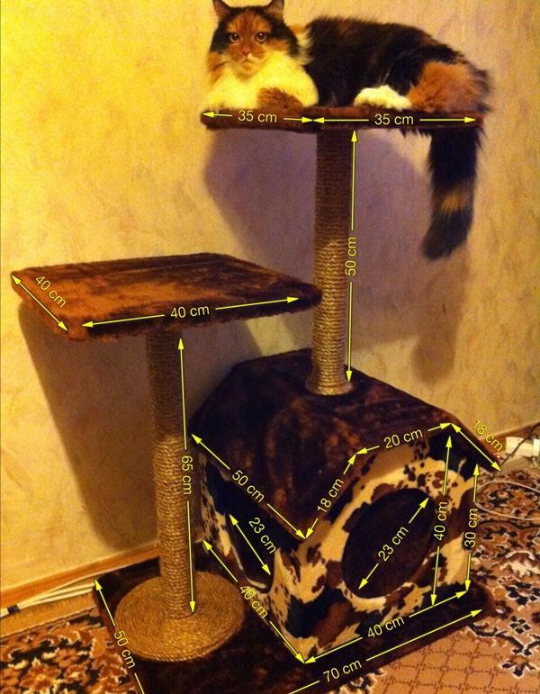 karcolások macskáknál természetes kezelés