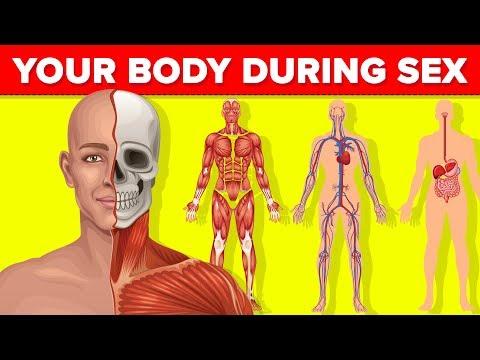 hogyan lehet azonosítani a helmintákat a testben