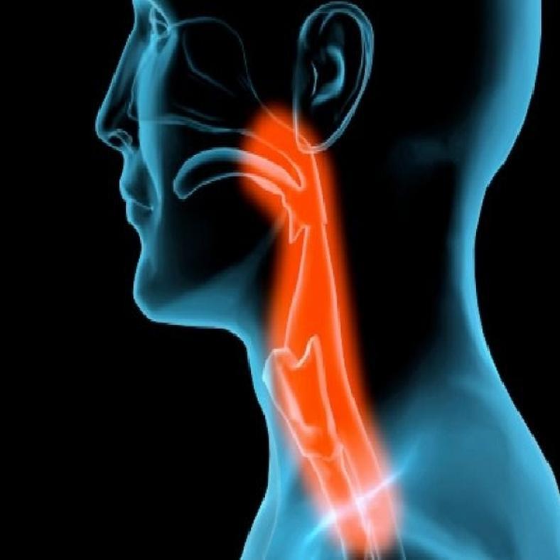 Mi okozza a papillóma nyelvét és hogyan kell kezelni