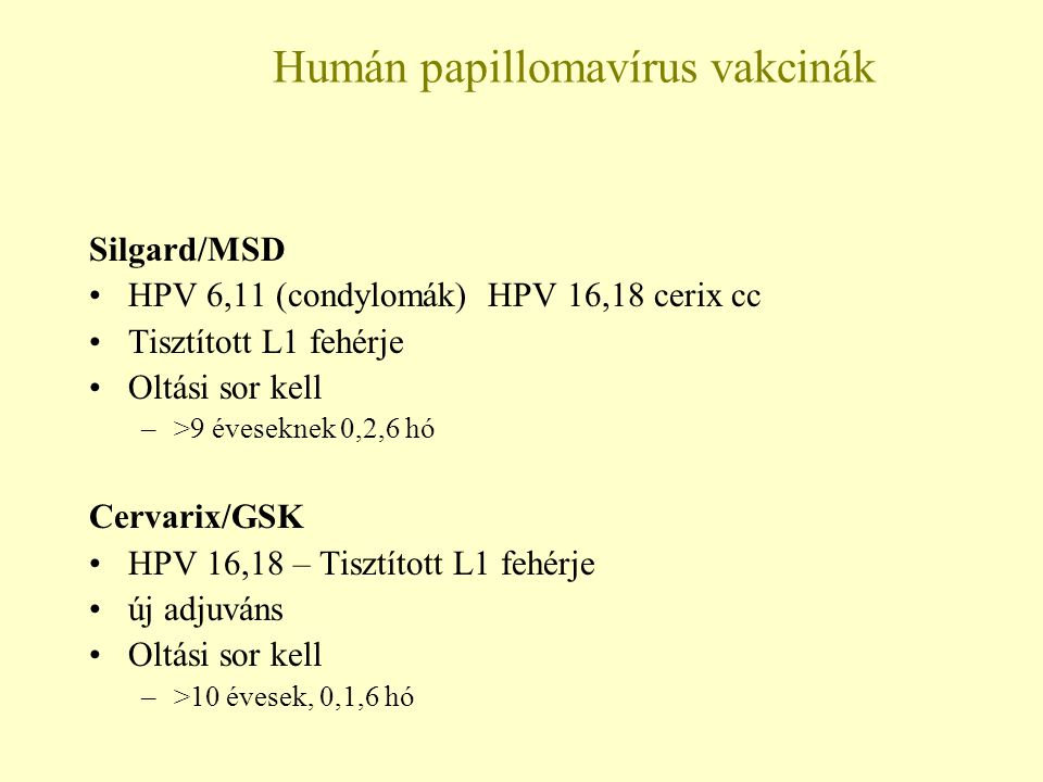 humán papillomavírus vírusellenes
