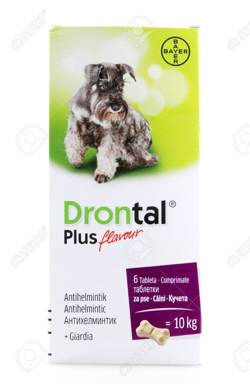 Drontal plus dose for giardia - Információk