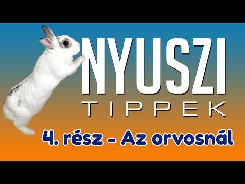 férgek a nyulak kezelésében)