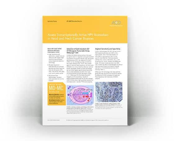 papillomavírus szaga tapasztalat a nemi szemölcsök kezelésében