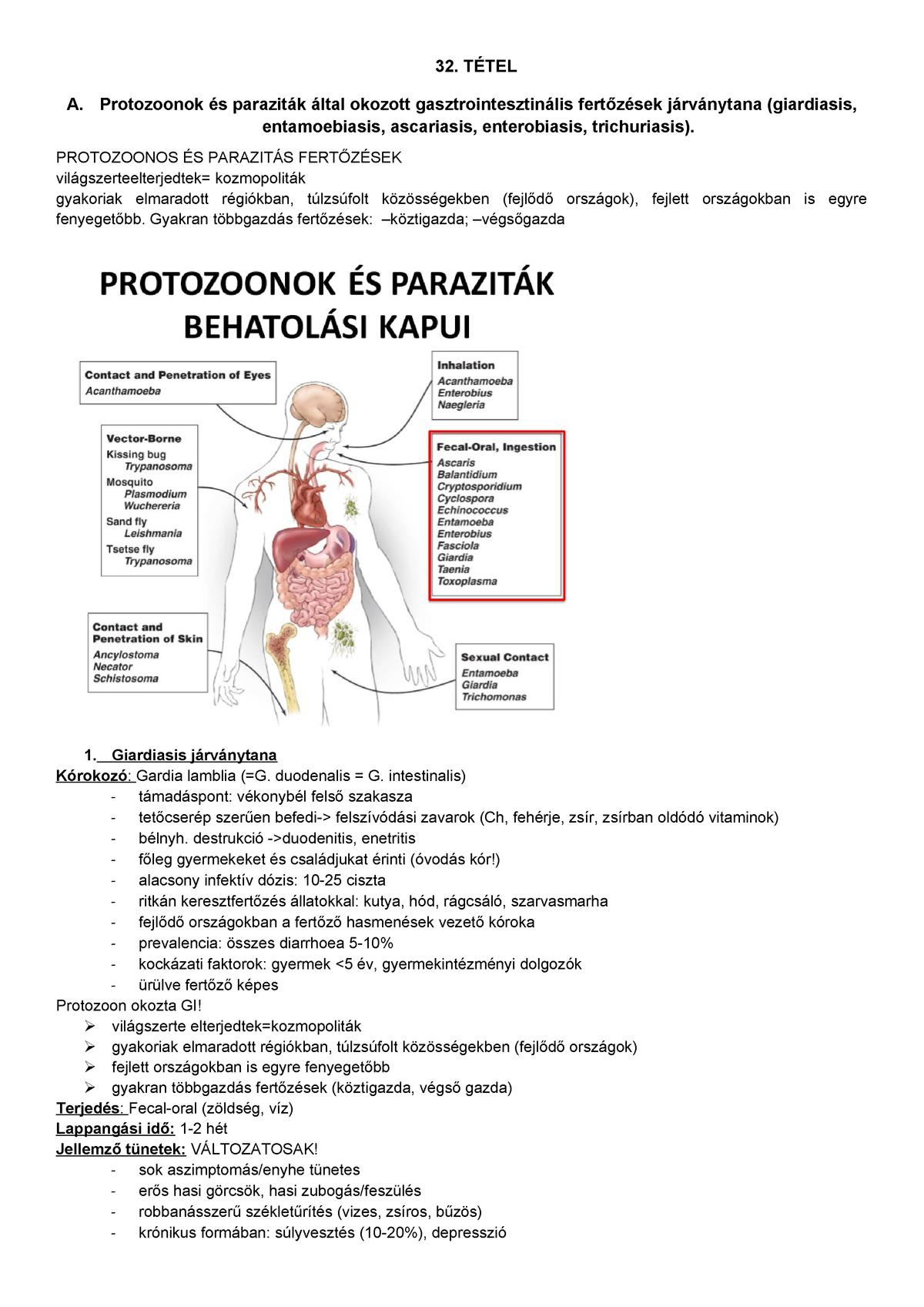 enterobiosis hol kell csinálni)