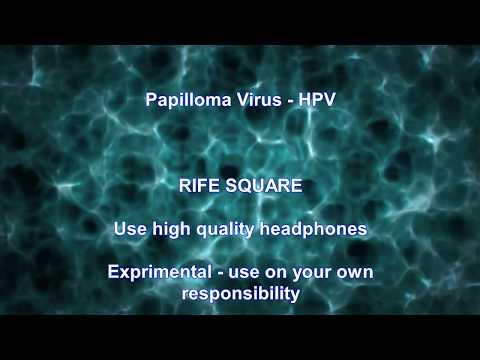 átvitel papilloma vírus