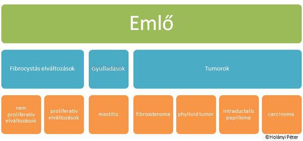 intraductalis papilloma a menopauza után)