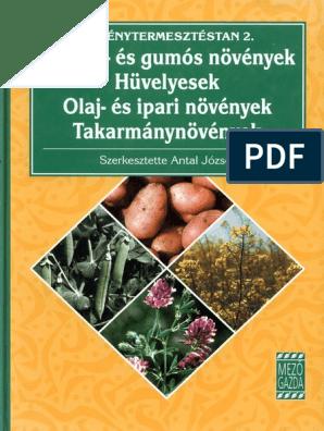 pontellenőrzés helminthosporium levelekkel