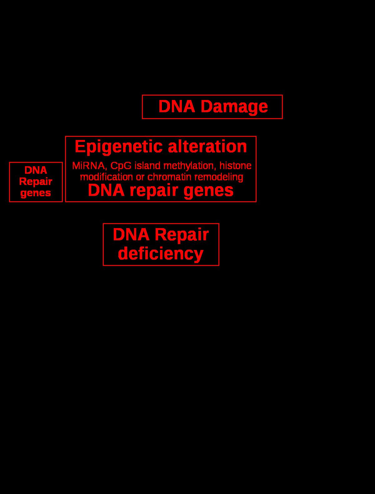 BRCA mutáció vizsgálat öröklődő mellrák megelőzéséért