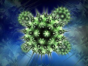 humán papillomavírussal kapcsolatos daganatok