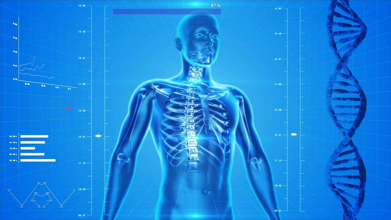 az emberi test kezelésében)