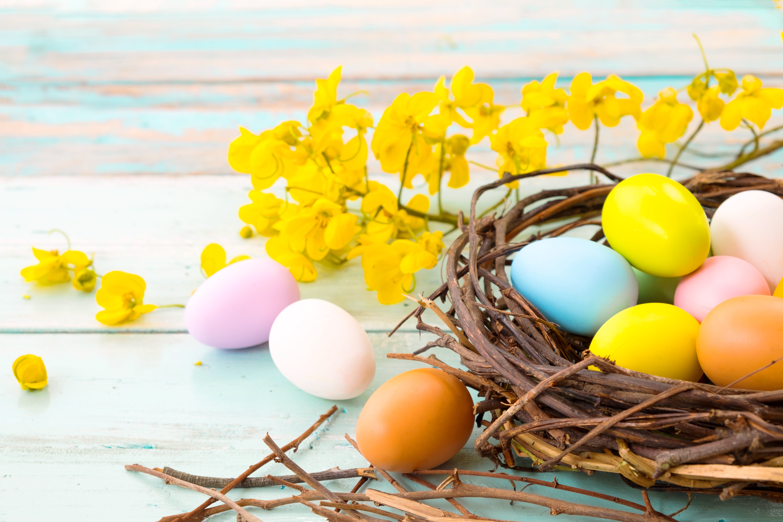 A tökéletes tojás   tancsicsmuvelodesihaz.hu