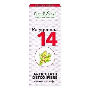 poligemma 11 pret)