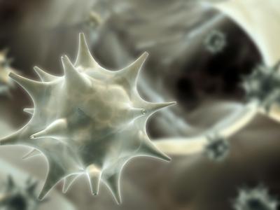 papilloma vírus melldaganat)
