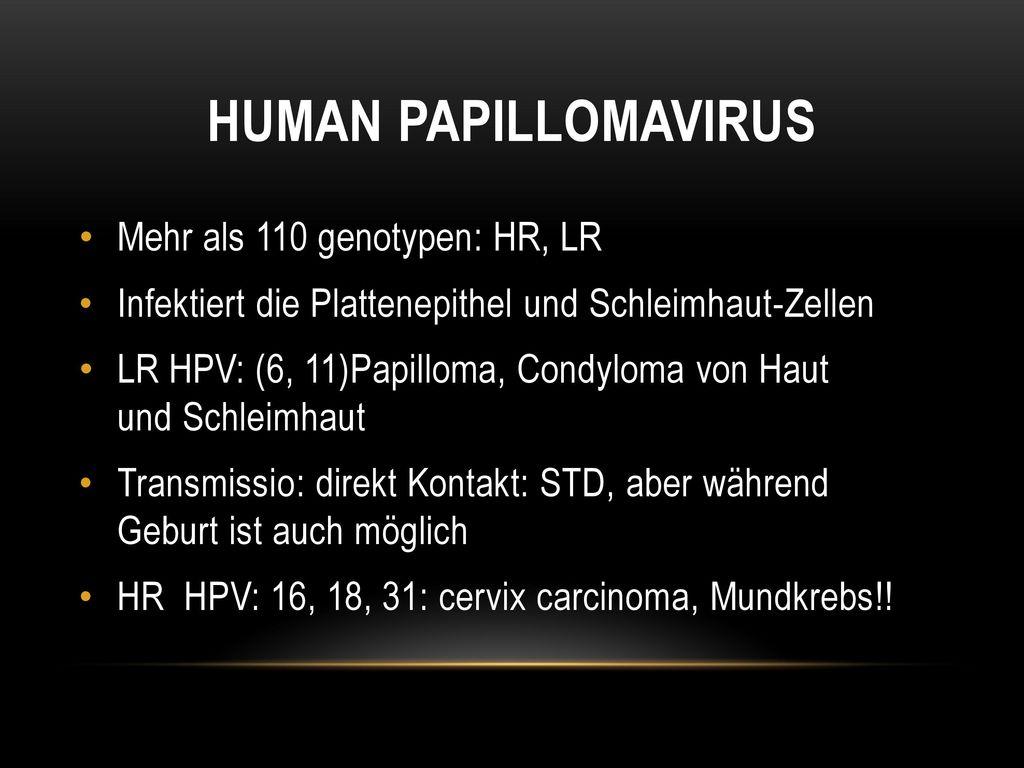 emberi papillomavírus zunge)