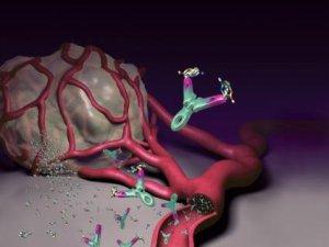 petefészekrák új kezelés 2020 cdc giardiasis kezelés