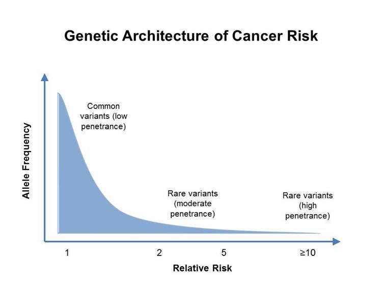 neuroendokrin rák története