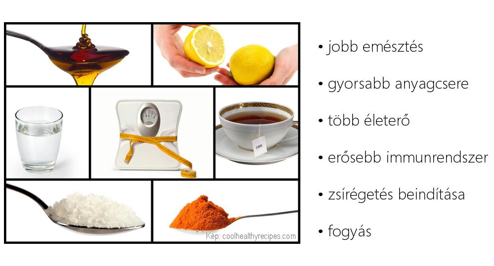 méregtelenítő test receptek