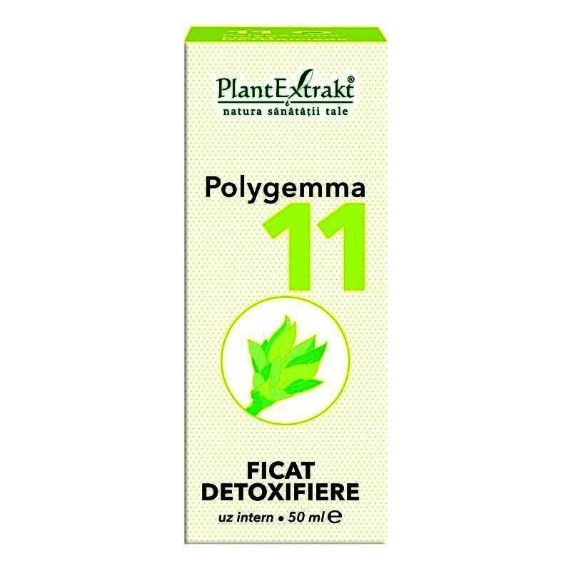 poligemma 11 pret