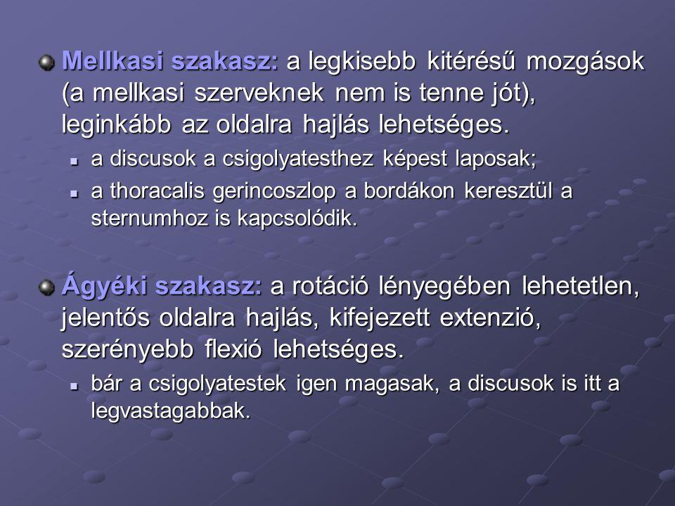 a genitális szemölcsök és papillómák koagulációja)