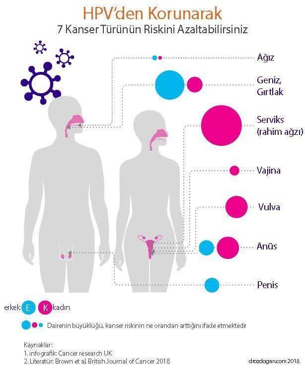 hpv etkisi nedir)