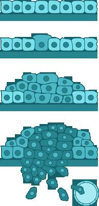 kóros sejtek hpv kezelése hiperparaziták