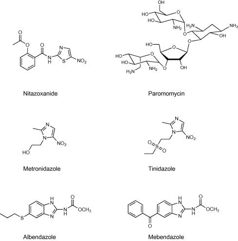 Cryptosporidium and giardia antigen - A szalagféreg parazita jelei az emberek kezelésében