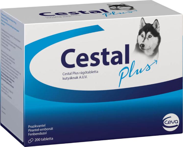 cestal tabletta plusz tabletta)