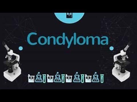 condyloma hogyan kell harcolni)