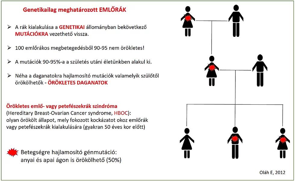 rák genetikai mutációi