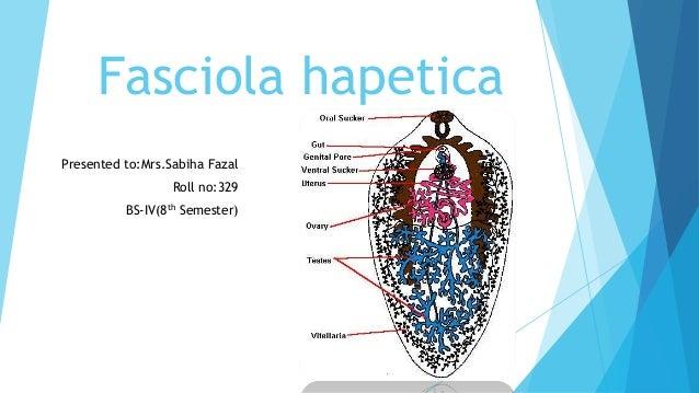 fascioliasis mrs)