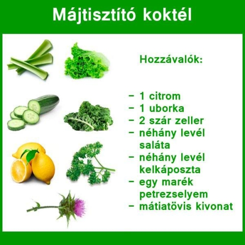 májtisztító tea)