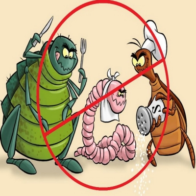 kako leciti paraziták és crevima