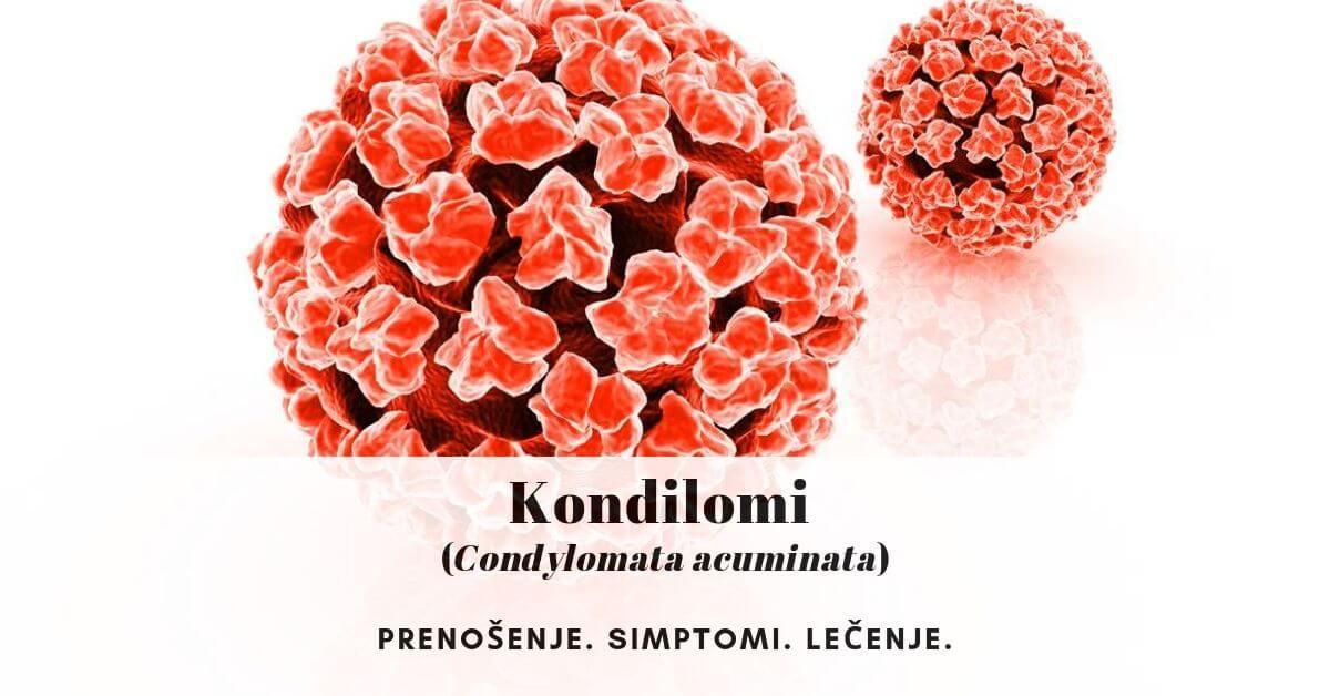 condyloma acuminata mkb