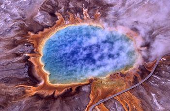 forrásban álló baktériumok
