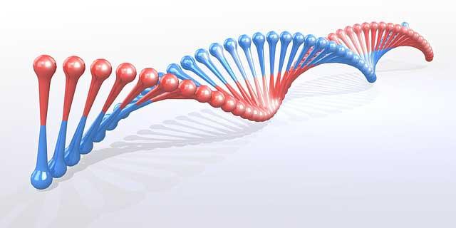genetikai mutációkat okozó rák