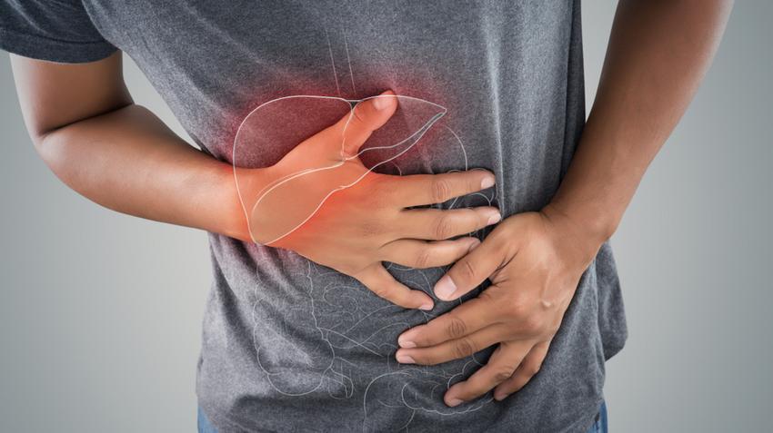 gliste u izmetu pasa dysbiosis fájdalom
