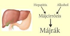 giardia és coccidia emberben hpv vírus terhes állapotban