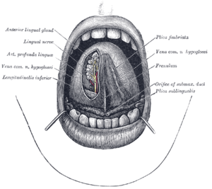 A szájüregi daganatok és tünetei