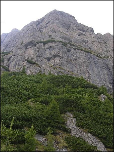 nedves repedés a hegyek között