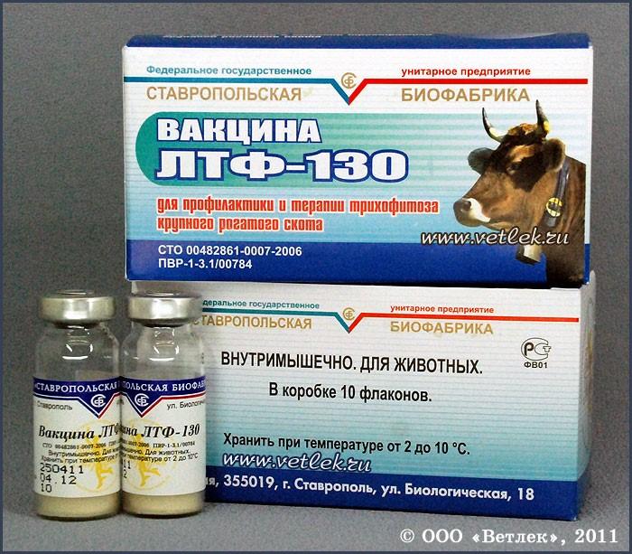 csigaférgek kezelése)