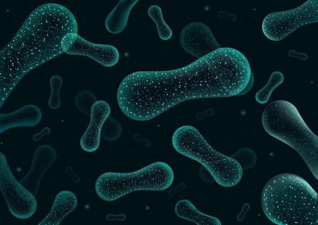 Miért fontosak a jófajta baktériumok? - HáziPatika