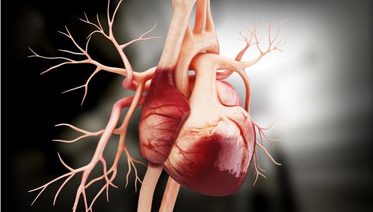 szívbeteg ember