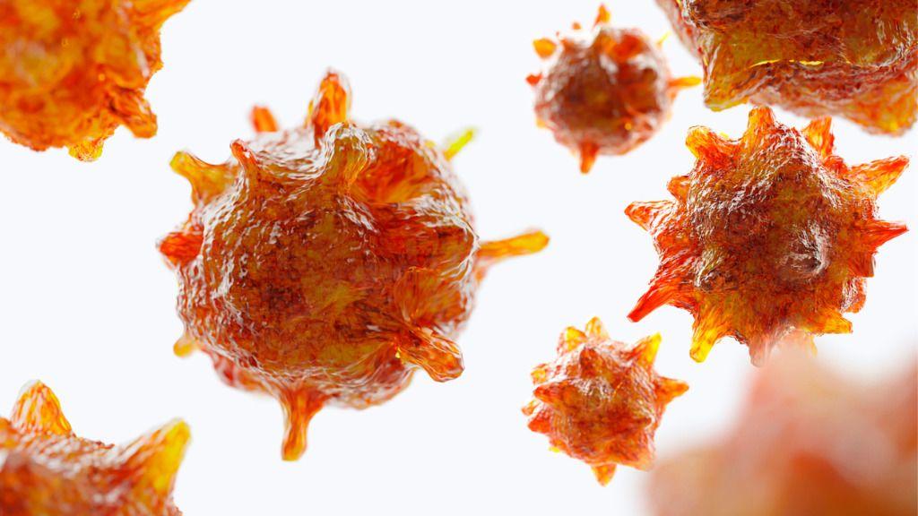 mi okozza a hpv torokrákot papillomavírus vastagbélrák