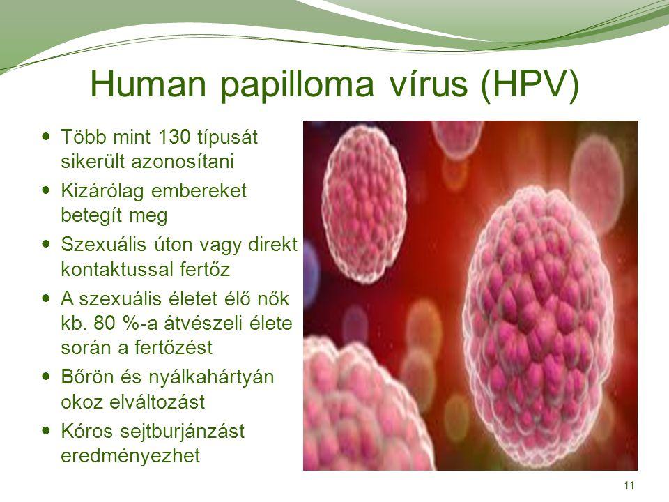 Ectopia és HPV 16 kezelés | PapiSTOP