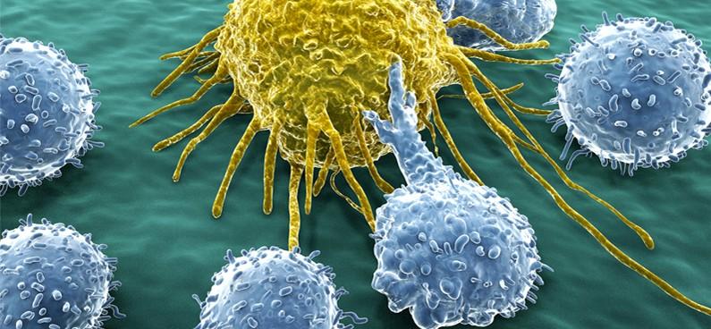 gyomorrák és immunterápia