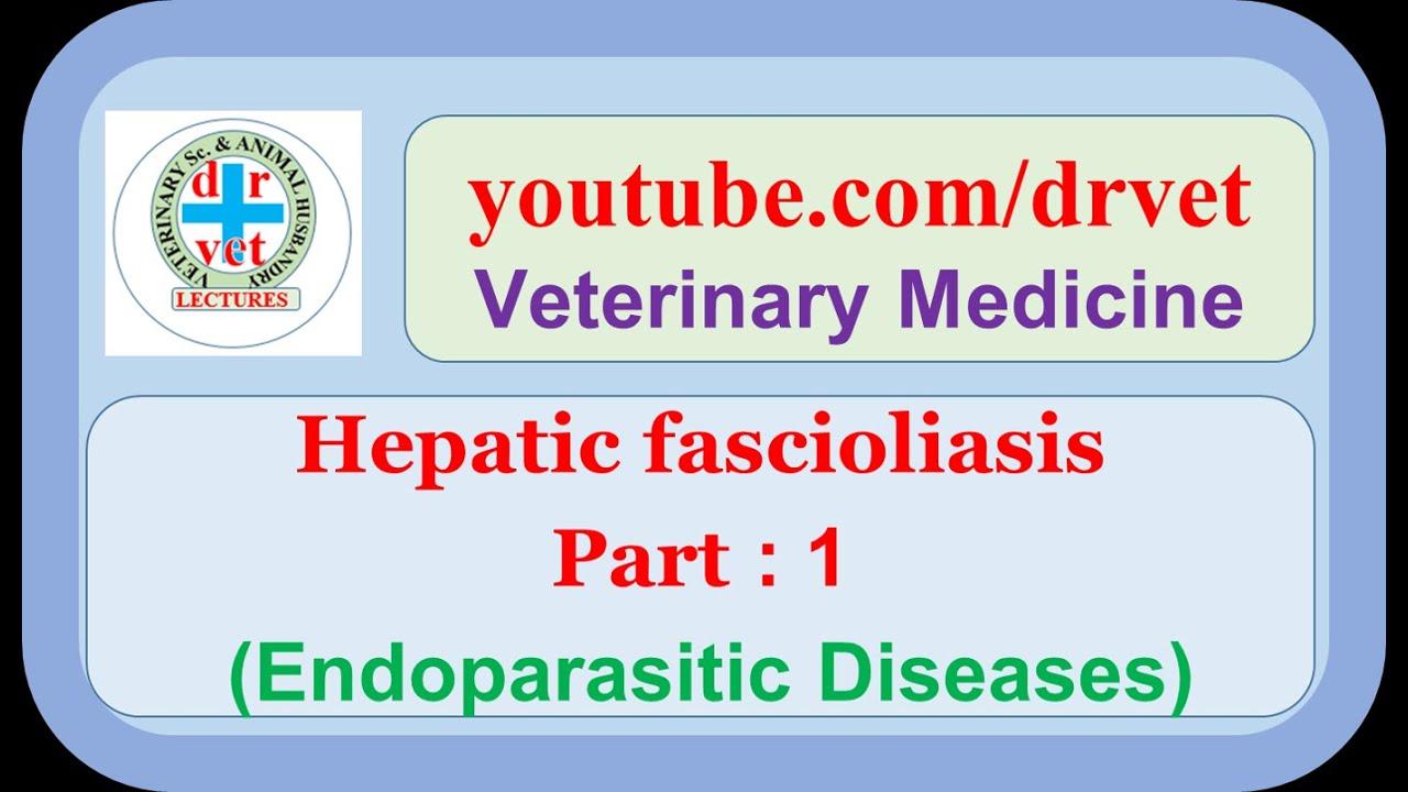 a fascioliasis patogenezisében)