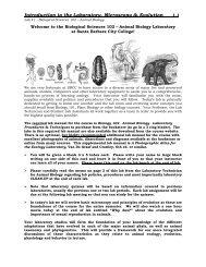 Strukturált víz és paraziták. A Kolcov lapok alkalmazási területei :: Kolcov lapok (KFSZ)