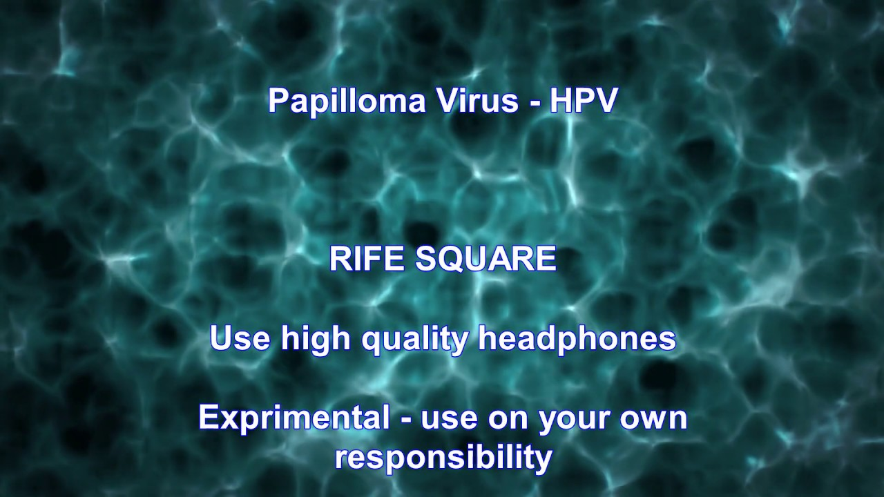 papillomavírus átvitel