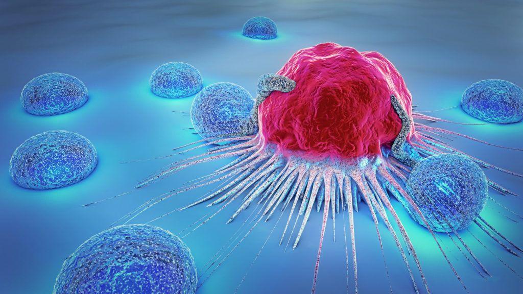 neuroendokrin rák és immunterápia