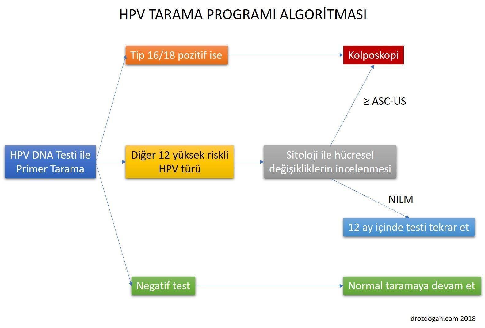 hpv dna jelentése